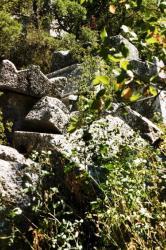 tombes de Thermessos.jpg