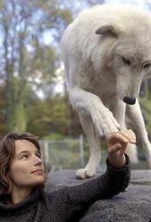 Helene grimaud avec un de ses loups lesloups20100219172736